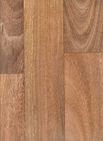 Spotted Gum 547