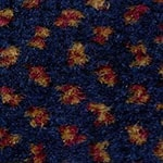 Royal Regatta